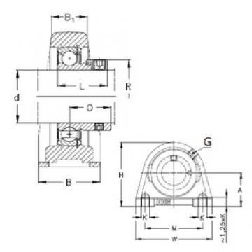 NKE PSHE40-N bearing units