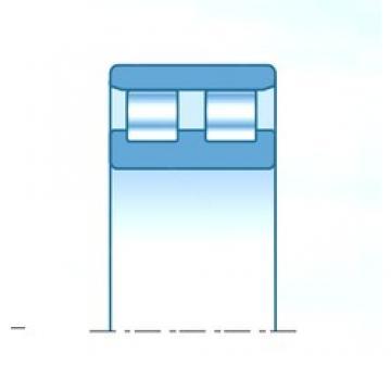 160 mm x 240 mm x 60 mm  NTN NN3032KC1NAP5 cylindrical roller bearings