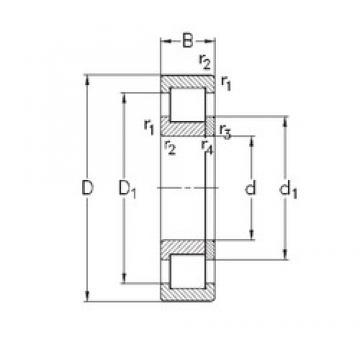 25 mm x 62 mm x 17 mm  NKE NUP305-E-MPA cylindrical roller bearings
