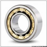 65 mm x 140 mm x 48 mm  NKE NJ2313-E-TVP3+HJ2313-E cylindrical roller bearings